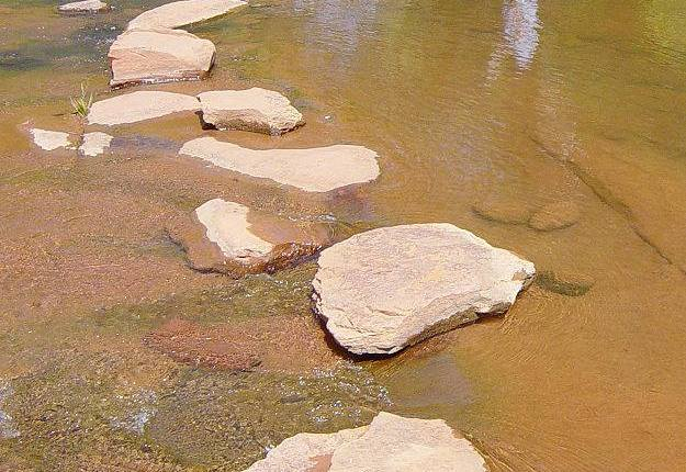 Stepping Stones ofLife